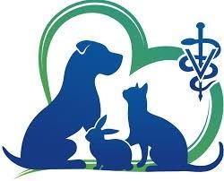 Клініка ветеринарної медицини