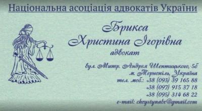Адвокат Брикса Христина