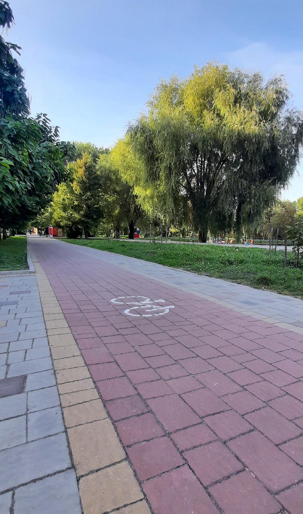 #veloternopil, Парк Топільче